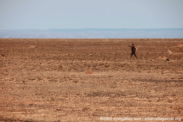 Man walking across a desolate savanna in Madagascar