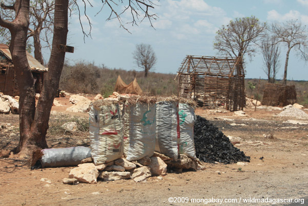 Charcoal for sale on a roadside in Madagascar
