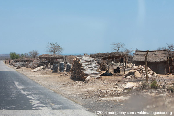 Fuelwood and charcoal for sale in Ankiliberengy village