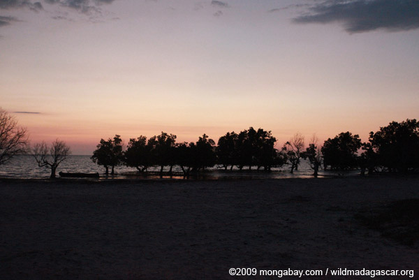 Sunset over mangroves and a beach south of Tulear