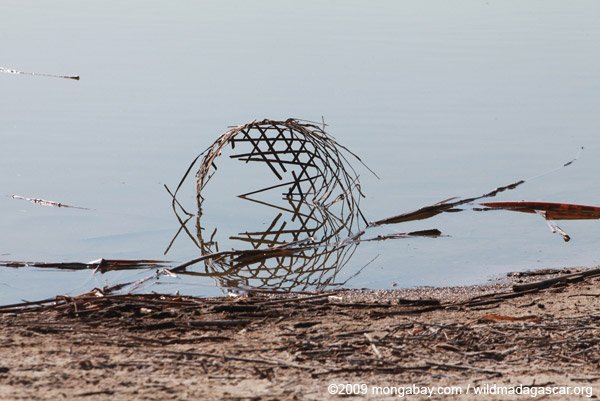 Remains of a basket in a river estuary