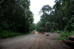 Road to Danum Valley