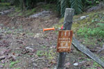 Electric fence to protect an oil palm plantation from elephants