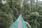 Danum Valley canopy walkway -- sabah_2620