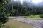 River? -- sabah_2740