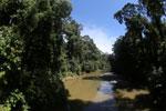 Danum river -- sabah_2891