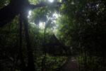 Camping platform at the Tungog Rainforest Eco-Camp -- sabah_3195