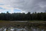 Oxbow lake in Borneo -- sabah_3340