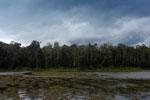 Oxbow lake in Borneo