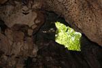 Batu Putih cave -- sabah_3489
