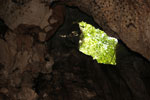 Batu Putih cave -- sabah_3490