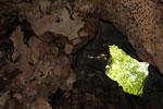 Batu Putih cave -- sabah_3491