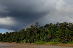 Rainbow over the Borneo rainforest -- sabah_3512