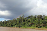 Rainbow over the Borneo rainforest -- sabah_3513