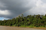 Rainbow over the Borneo rainforest -- sabah_3514