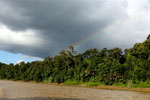 Rainbow over the Borneo rainforest -- sabah_3515