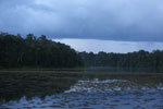 Oxbow lake in Borneo -- sabah_3567