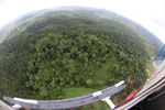Oil palm plantation and rainforest in Borneo -- sabah_aerial_0006