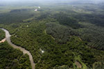 Oil palm plantation and mangroves in Borneo -- sabah_aerial_0017