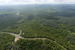 Oil palm plantation and mangroves in Borneo -- sabah_aerial_0023