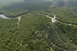 Oil palm plantation and mangroves in Borneo -- sabah_aerial_0024