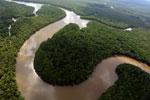 Lower Kinabatangan River -- sabah_aerial_0036
