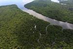 Borneo rainforest river -- sabah_aerial_0043