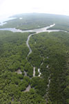 Aerial view of a Borneo mangrove forest -- sabah_aerial_0072