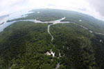 Aerial view of a Borneo mangrove forest -- sabah_aerial_0074