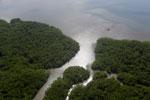 Aerial view of a Borneo mangrove forest -- sabah_aerial_0079