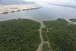Aerial view of a Borneo mangrove forest -- sabah_aerial_0080
