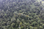 Degraded coastal forest in Borneo -- sabah_aerial_0085