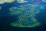 Coral reef off Borneo