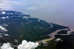 Forest and mangroves in coastal Northern Borneo -- sabah_aerial_0141
