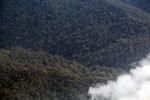 Rainforest in Borneo -- sabah_aerial_0150