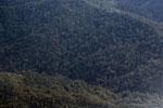 Rainforest in Borneo -- sabah_aerial_0151