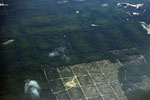 Deforestation in Borneo -- sabah_aerial_0155