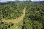 Borneo rainforest river -- sabah_aerial_0175