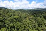 Rainforest in Borneo -- sabah_aerial_0182