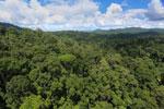 Rainforest in Borneo -- sabah_aerial_0185