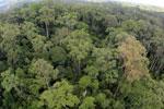 Rainforest in Borneo -- sabah_aerial_0200