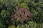 Rainforest in Borneo -- sabah_aerial_0211
