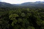 Rainforest in Borneo -- sabah_aerial_0236