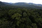 Rainforest in Borneo -- sabah_aerial_0241