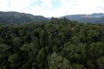 Rainforest in Borneo -- sabah_aerial_0256