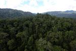 Rainforest in Borneo -- sabah_aerial_0257