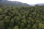 Rainforest in Borneo -- sabah_aerial_0260