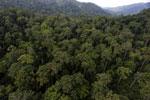 Rainforest in Borneo -- sabah_aerial_0263