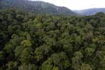 Rainforest in Borneo -- sabah_aerial_0265