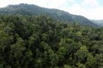 Rainforest in Borneo -- sabah_aerial_0267